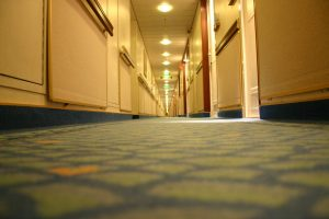 Carpet Cleaning in Putney SW15