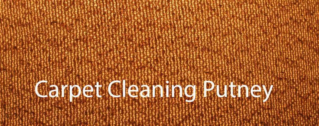 Putney Carpet Cleaning Company